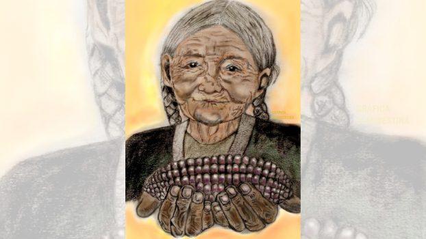 dobujo abuelita con semillas